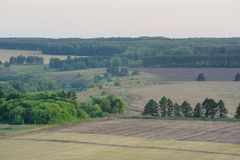 Wide fields and green trees in summer after sunset. Horizontal Stock Images