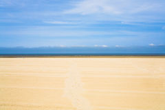 Wide flat sandy beach in Normandy Stock Photography