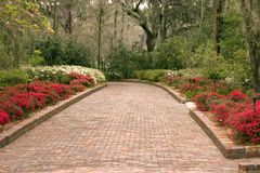 Wide garden walkway Royalty Free Stock Image