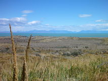 Wide grassy pampa in argentinian patagonia Royalty Free Stock Image