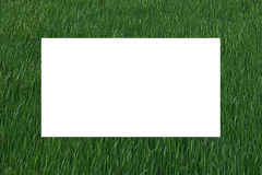 Wide Green Border in Grass Texture Royalty Free Stock Images