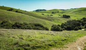 Lush Green hillsides of Sanoma County, CA. Wide Green hillsides of Sonoma County, CA stock photography