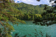 A wide green river flowing at the foot of the mountains covered with forests. Stock Photos