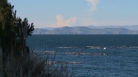 Fishing Boats At Pomota , Lake Titicaca, Peru