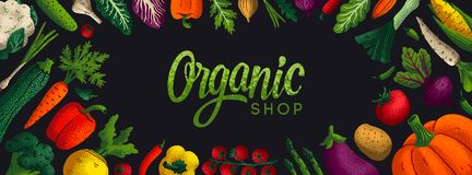 Wide horizontal Healthy eating background. Copy space. Variety of decorative vegetables with grain texture on white. Background. Farmers market, Organic food stock illustration