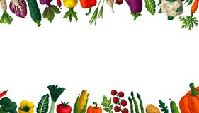 Wide horizontal Healthy eating background. Copy space. Variety of decorative vegetables with grain texture on white. Background. Farmers market, Organic food vector illustration