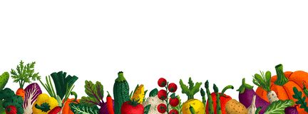 Wide horizontal vegetable background. Copy space. Variety of decorative vegetables with grain texture on white. Background. Farmers market, Organic food poster stock illustration