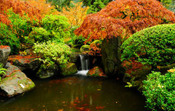 Wide horizontal view of a waterfall in autumn Stock Image