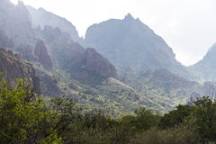 Wide landscape of Big Bend National Park Royalty Free Stock Images