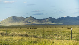 Wide landscape of Big Bend National Park Royalty Free Stock Photography