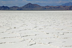 Wide landscape of Great Salt Lake Desert Royalty Free Stock Image