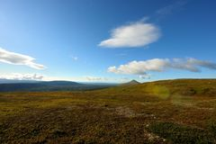 Wide landscape in sweden. The nipfjället nature reservat in sweden Royalty Free Stock Images