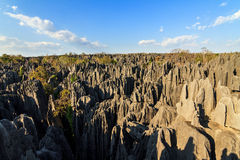 Wide landscape Tsingy Stock Photo