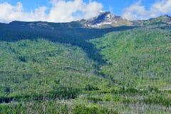 Wide landscape wilderness of the Glacier National Park Royalty Free Stock Image