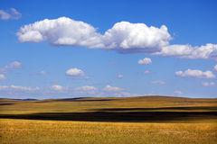 Wide meadow Stock Image