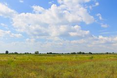 Wide meadow and blue sky Stock Images