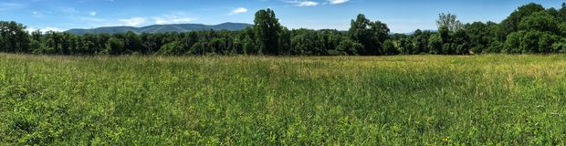Wide meadow panorama with distant mountains Stock Images