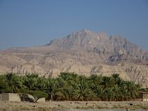Road view of Date Palms Oasis in the Desert - Ras Al Khaimah, United Arab Emirates. The wide mountain range around the United Arab Emirates is a holiday stock photo