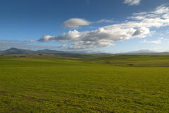 Wide open field with clear skies Royalty Free Stock Photos