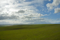 Wide open field with clear skies Stock Photo