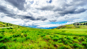 The wide open grasslands and rolling hills of the Nicola Valley. Between Kamloops and Merritt, British Columbia Royalty Free Stock Image