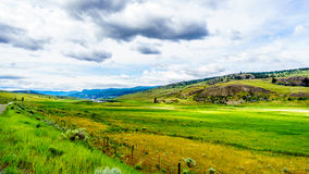 The wide open grasslands and rolling hills of the Nicola Valley. Between Kamloops and Merritt, British Columbia Royalty Free Stock Photography