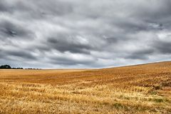 Free Wide Open Harvested Wheat Field Underneath A Grey, Overcast Sky Stock Photo - 125549090