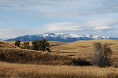 Wide Open Space. Snowy mountains in the distance Royalty Free Stock Image