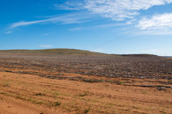 Wide Open. Western Australian landscape with red sand and generic native vegetation on rolling hills under a blue sky with wispy clouds Stock Image