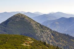 Wide panorama of green mountain hills in sunny clear weather. Carpathian mountains landscape in summer. View of rocky peaks covere. D with green pine trees stock photos