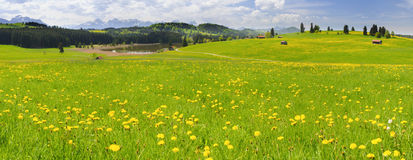 Wide panorama landscape in Bavaria Royalty Free Stock Images
