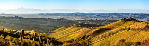 Wide panorama of Langhe region in northern italy, on autumn,unes Royalty Free Stock Images