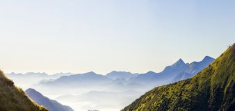 Wide panorama of morning mountain hills. Carpathian mountains at stock images