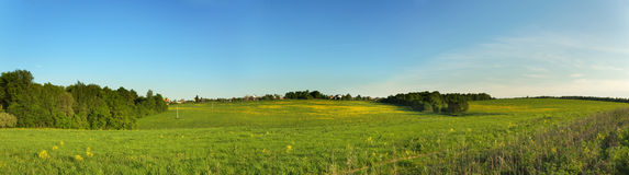 Wide panorama of summer meadow. Wide panorama view of summer meadow with small village Stock Photography