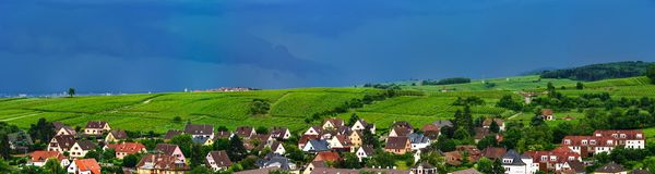 Wide panoramic aerial view of Alsace, Ribeauville. Green valley. France stock image