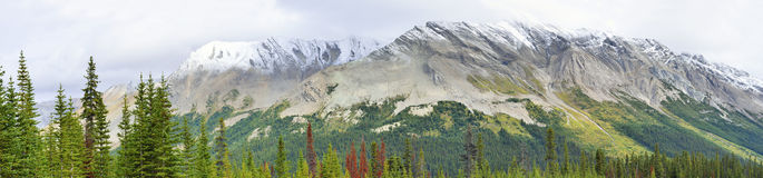 Wide panoramic view of the alpine scenery along the Icefields Parkway between Jasper and Banff in Canadian Rockies Royalty Free Stock Photos