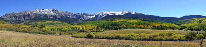Wide panoramic view of the colorful yellow, green and red aspen during foliage season Royalty Free Stock Images