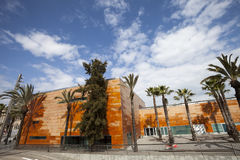 Wide panoramic view, orange building and palm trees. Blue sky with clouds Royalty Free Stock Image