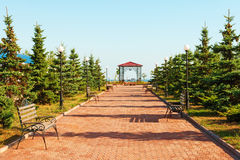 Wide path in nice light  park under blue sky Royalty Free Stock Photos