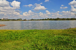 Wide pond and green grass under cloudy sky. In the summer Stock Photos