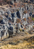 Wide quarry wiev Stock Photography
