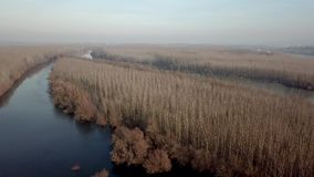 Wide river Autumn Aerial view. Aerial View River stock video footage
