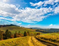 Wide road in the Carpathian Mountains. Stock Image
