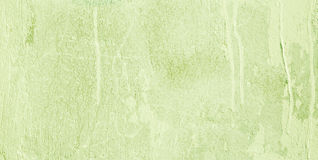 Wide screen Decorative Light Green background. Abstract Grunge Decorative Light Green Painted Stucco Wall Texture. Handmade Rough Spring Background With Copy Royalty Free Stock Image