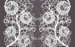 Wide seamless white lace ribbon with roses. Stock Images
