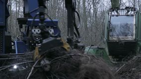 Wide shoot of grinder working. And crushing branches in forest stock video