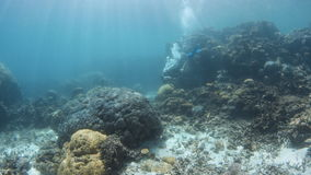 Wide shot of a blue seabed with scuba diver. A wide shot of the blue seabed with scuba diver and coral reefs. Tracking shot of the coral reefs stock video footage