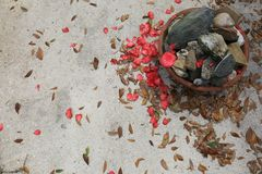 Concrete with Leaves, Flower Pedals and Stones royalty free stock photography