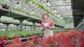 Wide shot of confident male biologist walking in greenhouse with tablet. Portrait of professional Caucasian man looking