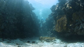 Coral reef and sunrays with scuba diver. A wide shot of a coral reef and a scuba diver trying to pass through the coral reef. Sun so bright creating a sun rays stock video